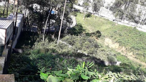 Terreno Em Aclive A Venda Na Vila Andrade - 273-im392299