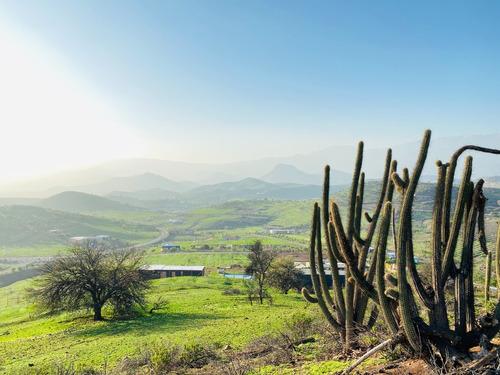 Imagen 1 de 11 de Sitio Unico En Hacienda Chacabuco