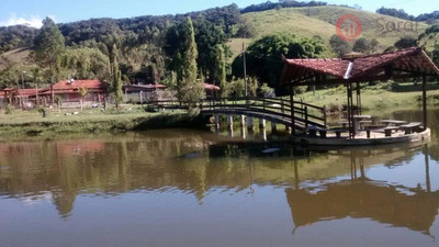 Sítio Rural À Venda, Zona Rural, Barbacena. - Si0033