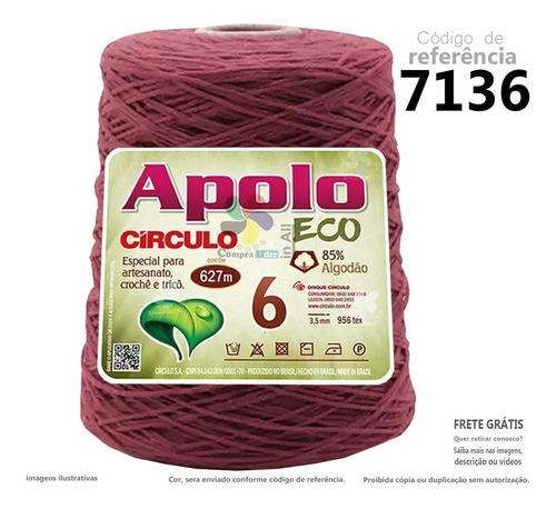 Imagem 1 de 1 de Apolo N6 Eco 627metros Barbante Lã Circulo Croche Trico - A
