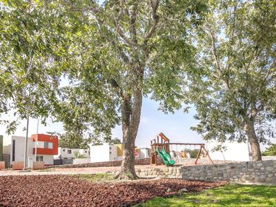 Desarrollo Paseo De Los Nogales
