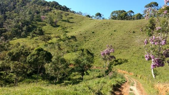 Vendo Sitio De 36,3 Hectares Em Natividade Da Serra (4147)