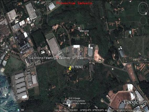 Área À Venda Em Macuco - Ar211086