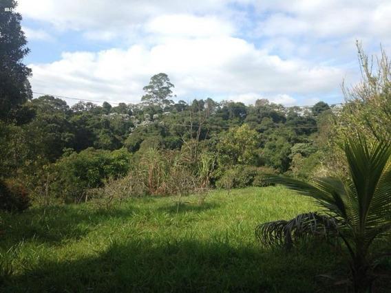 Sítio Para Venda Em Mogi Das Cruzes, Vila Moraes, 3 Dormitórios, 2 Banheiros, 10 Vagas - 1643_2-760891