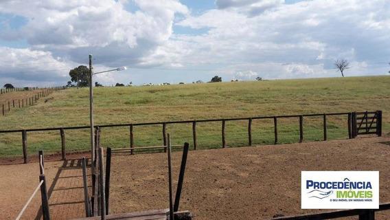 Fazenda À Venda, 318 Alqueirão Por R$ 31.800.000 - Zona Rural - Santa Vitória/mg - Fa0018