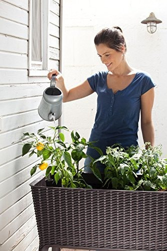 Keter Cama Jardin Elevada Cultivo Facil