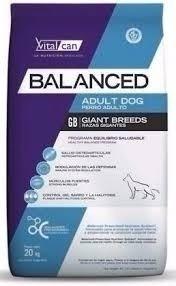 Vital Can Balanced Adulto Giant X 20 Kg. Sabuesos Vet