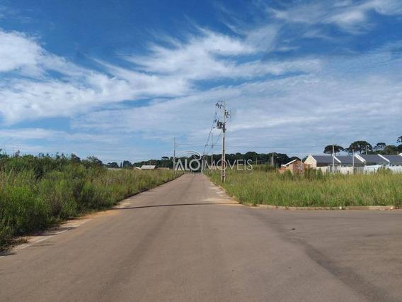 Terreno À Venda, 220 M² Por R$ 100.000 - Estados - Fazenda Rio Grande/pr - Te0092