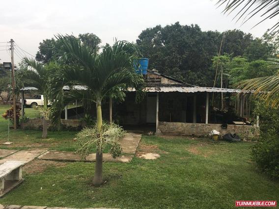 Terrenos En Venta/finca Vigirima/auristela R. 04243174616