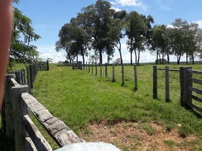 Fazenda A Venda Em Bodoquena - Ms (pecuária) - 1040