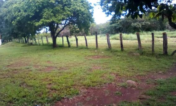 Terreno En Venta S J De Los Morros Parra 04242405066