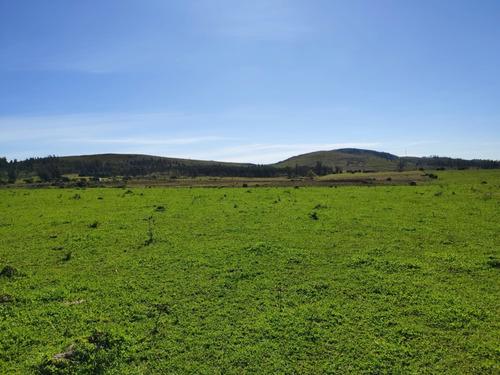 Campo De 10 Hec En Los Ceibos