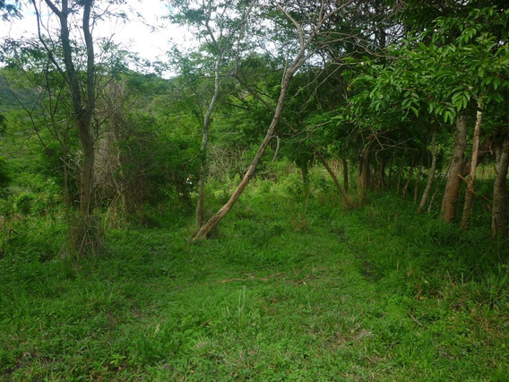 En Vilcabamba Ecuador Vendo Lindo Terreno 0991280884