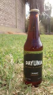 Cerveza Artesanal Ipa Belga Pack X 12u 355cc