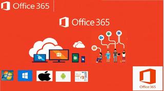 Office 365 Original 5 Pc