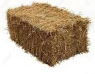 Fardos Pasto Alimento Animales Paillaco. Reg.de Los Rios