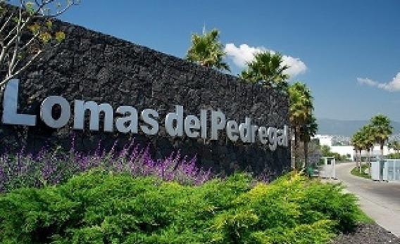 Lomas Del Pedregal, Preventa, Conjunto Con Gimnasio Y Terrazas