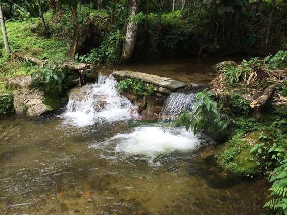 Sítio Rural À Venda, Figueira (pé Da Serra), Ubatuba-sp - Si0006