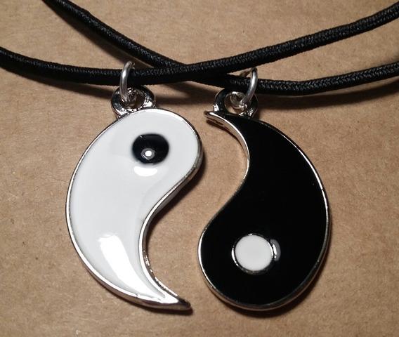 Colar Amizade Yin Yang Best Friends Namorados Aço Duplo