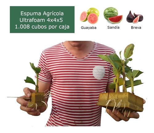 Imagen 1 de 3 de Caja De Espuma Agrícola Ultrafoam 4x4x5