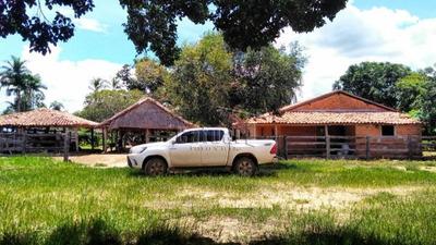 Rural Fazenda - 40228-v