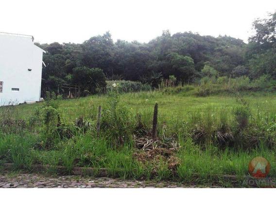 Terreno Residencial À Venda, São Luis, Dois Irmãos - Te0074. - Te0074