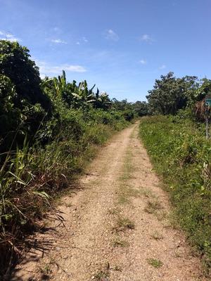 Terreno, Puerto Maldonado, Amazonia, Selva, Ecologia, Lodge,