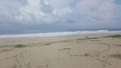 Mas De 10 Hectáreas Frente Al Océano Pacifico Y Carretera Playa Del Carrizal. Ideal Para Hotel.