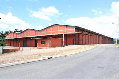 Galpão Comercial Para Venda E Locação, Centro, Gaspar. - Ga0066