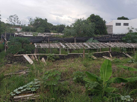 Terreno Plano - Araçatuba