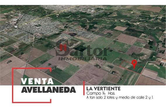 Campo 14 Has La Vertiente Avellaneda Santa Fe