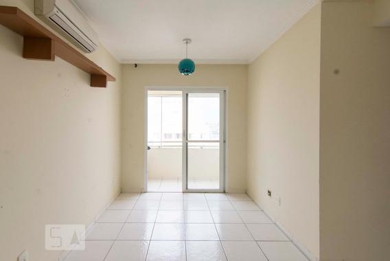 Apartamento Para Aluguel - Sítio Do Mandaqui, 2 Quartos, 58 - 893015636