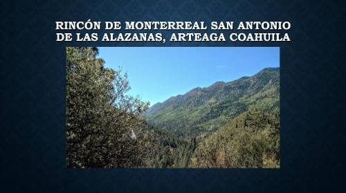 Terreno Venta En San Antonio De Las Alazanas.