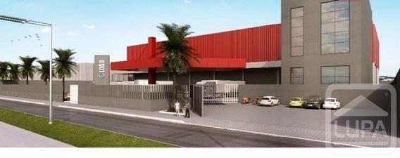 Galpão - Bonsucesso - Ls12672