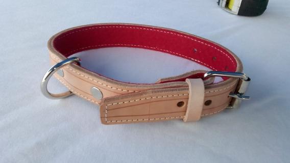 Collar De Cuero Para Perro Exelente Calidad 55 X 2.5 Cm