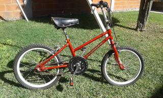 Bicicleta Pioneer Rodado 16