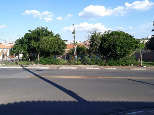 Terreno À Venda Em Jardim Novo Ângulo - Te276594