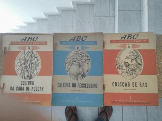 Revista A B C Do Lavrador Pratico