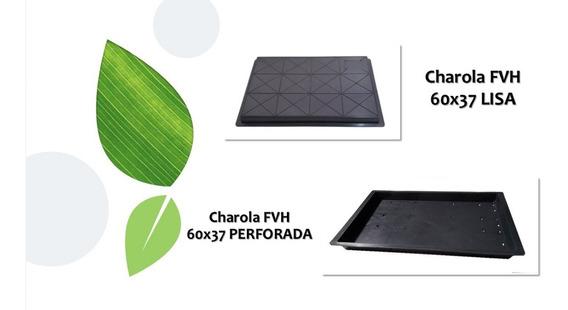 Charola Para Forraje Verde Hidroponico Fvh (10 Pza 37x60 Cm)