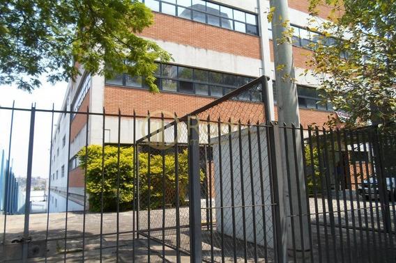 Galpão, Pé Direito 8,40m, Castelo Branco, Alphaville - Rx8969