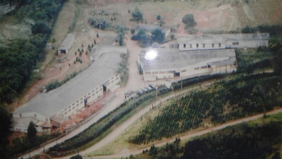 Galpão Para Alugar - Santo Amaro - Zona Sul