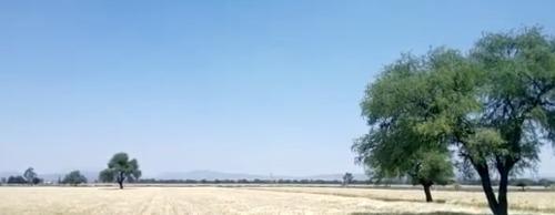 Terreno En Venta Colon Cerca Aeropuerto Qro. 100 Has