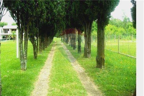 Nvo.valor Venta Casa Quinta+pileta+bosque-cañuelas