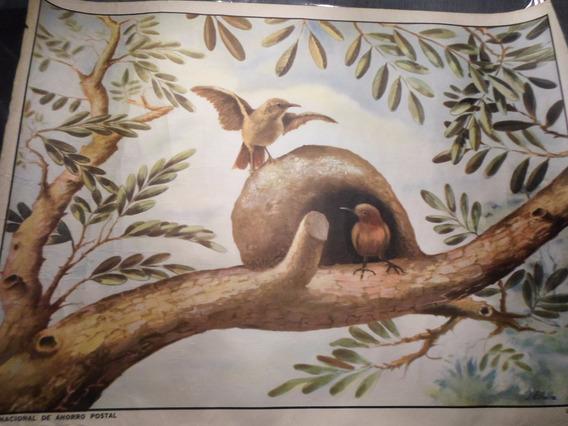Poster Antiguo Caja Nacional De Ahorro Postal Nº 5