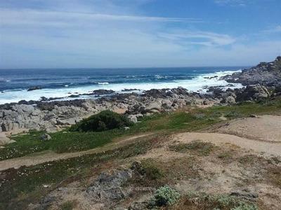 Isla Negra / Punta De Tralca