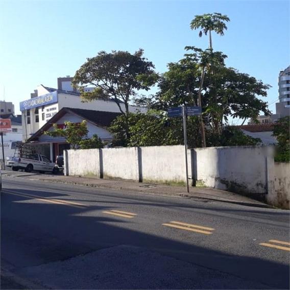 Excelente Terreno Comercial E Residencial, Na Rua Principal Do Bairro Trindade! - 29-im388479