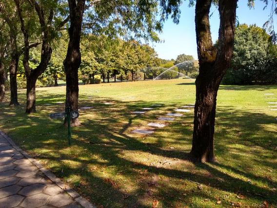 Jardin De Paz Vendo Parcela Excelente Ubicación Y Sin Deudas