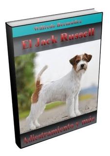 Libro Electrónico El Jack Russell Adiestramiento Y Mas