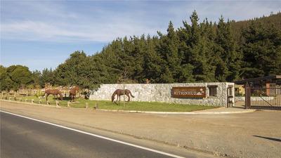 La Reserva De Mitrinhue