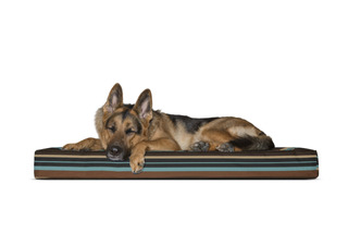 Furhaven Memory Top Mattress Pet Bed For Dogs And Cats, Avai